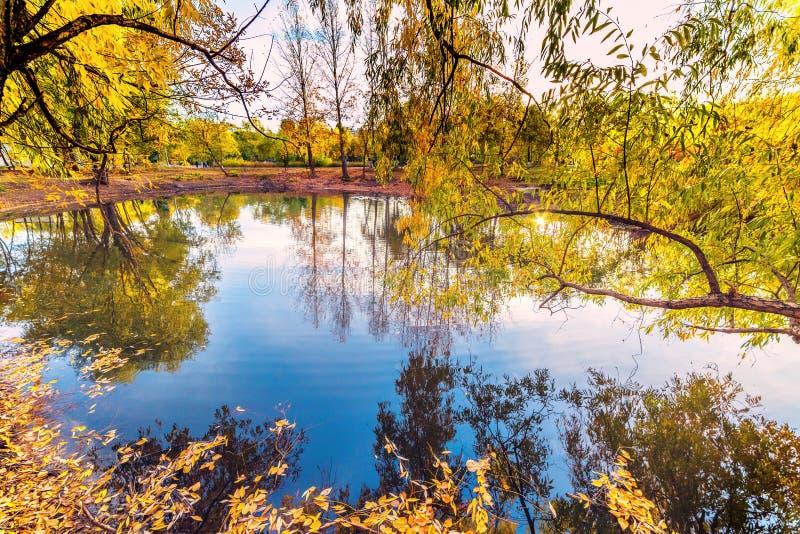 Meer in het stadspark in de Gouden Herfst stock foto