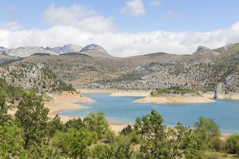Meer met bergen in de achtergrond en de bomen royalty-vrije stock foto