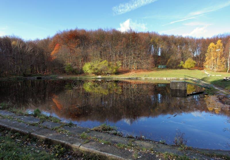 Meer met de herfst bosbezinning stock fotografie