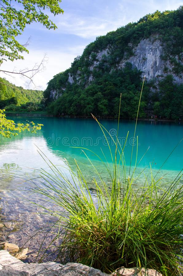 Meer met duidelijk turkoois water, de Nationale Meren van parkplitvice, C royalty-vrije stock foto