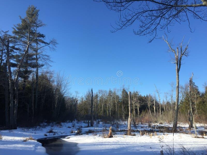 Meer met Sneeuw royalty-vrije stock fotografie