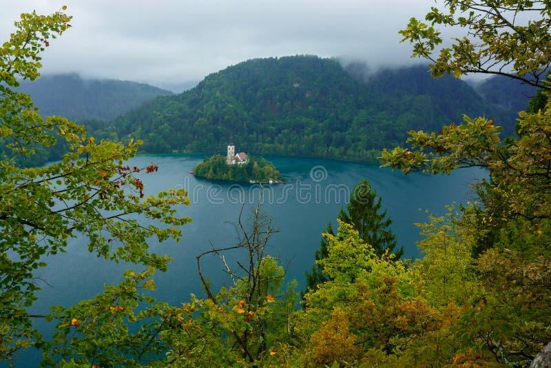 Meer met St Marys Kerk van Veronderstelling op klein eiland wordt afgetapt dat Slovenië, Europa royalty-vrije stock foto