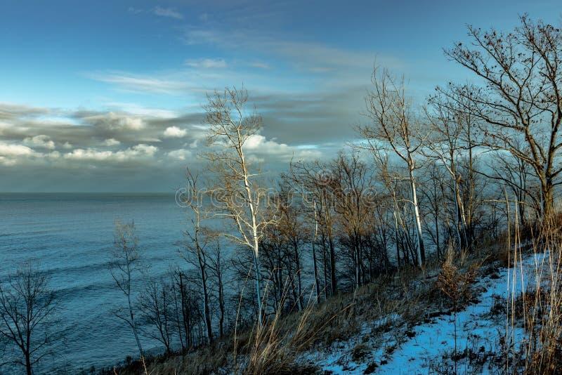 Meer Michigan na sneeuwend Illinois royalty-vrije stock foto's