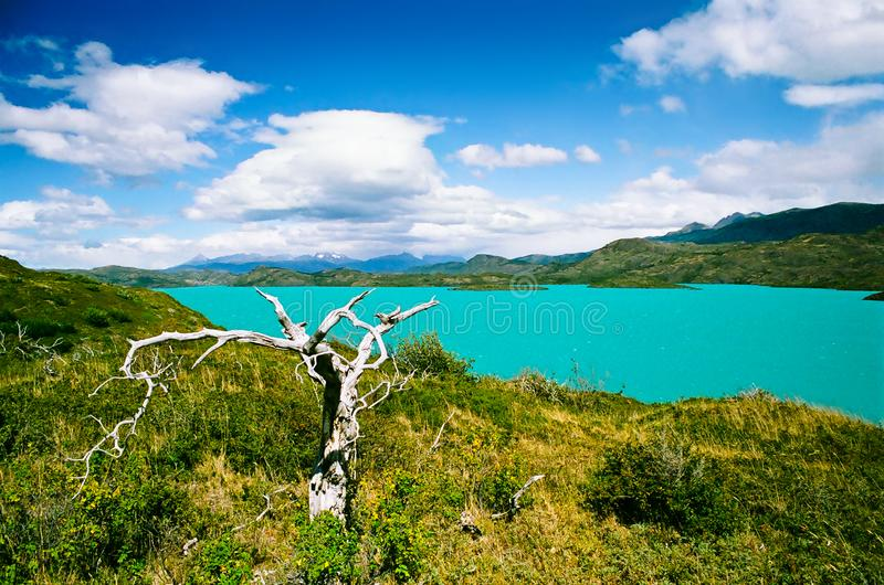Meer Pehoe in Torres del Paine National Park - Chili royalty-vrije stock fotografie