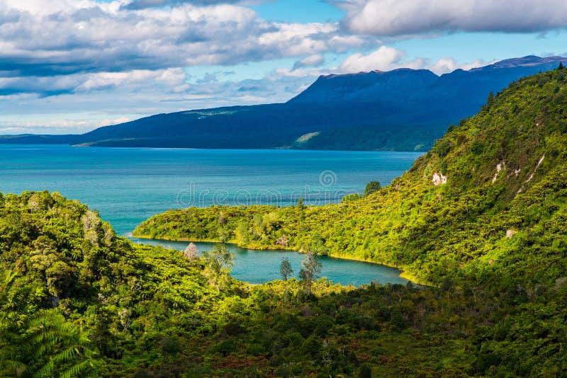 Meer Tarawera, Rotorua, Nieuw Zeeland stock fotografie