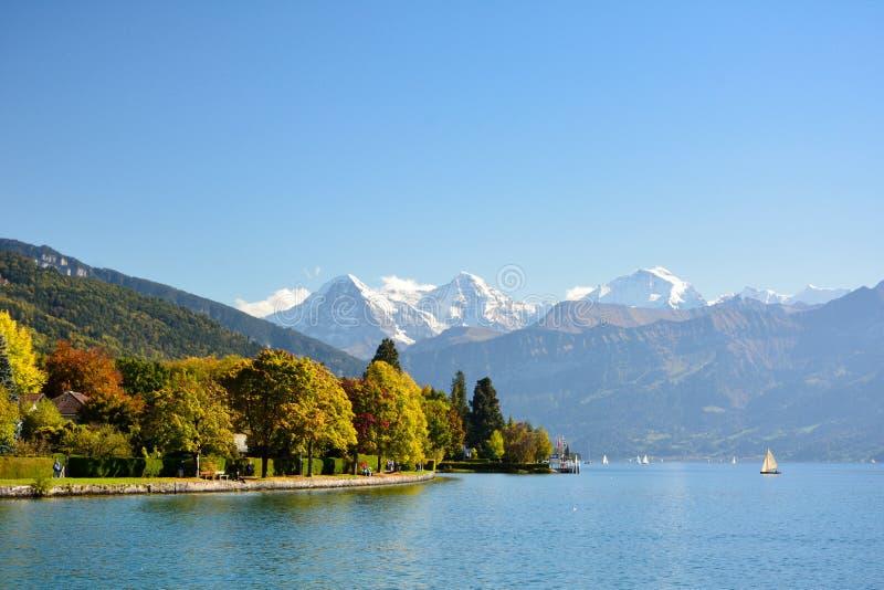 Meer Thun met Jungfrau-berg in de herfst op duidelijke blauwe hemel, S stock foto