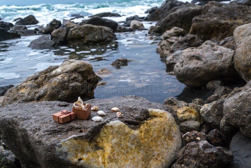 Meer und Muscheln lizenzfreies stockfoto