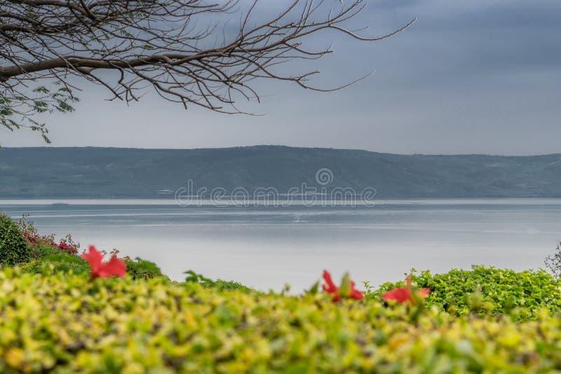 Meer van Galilee stock foto's