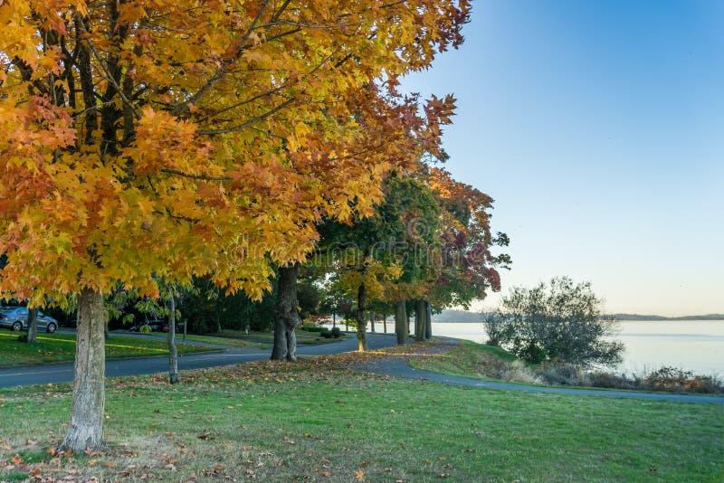 Meer Washington Autumn Colors 2 stock foto's