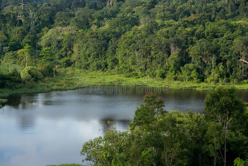 Meer, Water, het Nationale Park van Khao Yai, Saraburi-Provincie, Thailand stock foto's