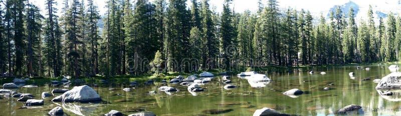 Meer in Yosemite stock foto
