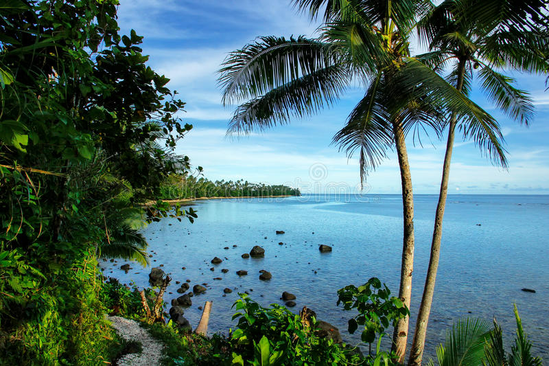 Meerblick entlang kostalem Weg Lavena auf Taveuni-Insel, Fidschi lizenzfreies stockbild