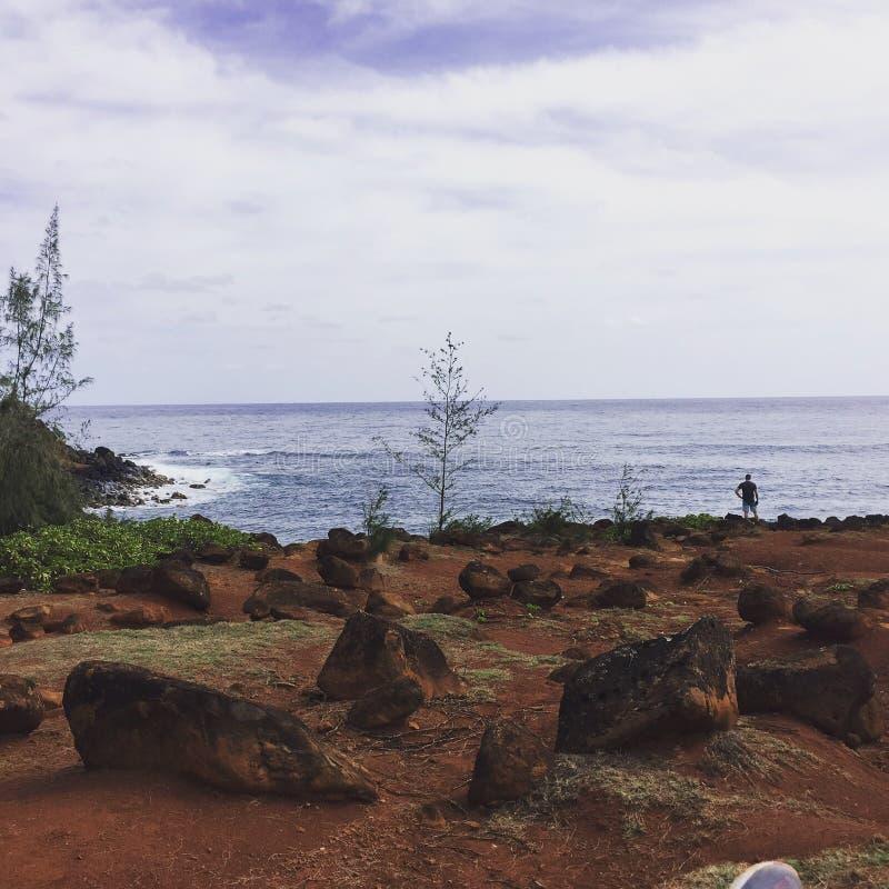 Meerblick während der Wanderung in Hawaii stockfotografie