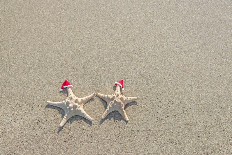 Meeres-Sterne verbinden in Sankt-Hüten auf dem Sand stockfotografie