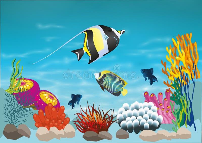 Meeresflora und -fauna lizenzfreie abbildung