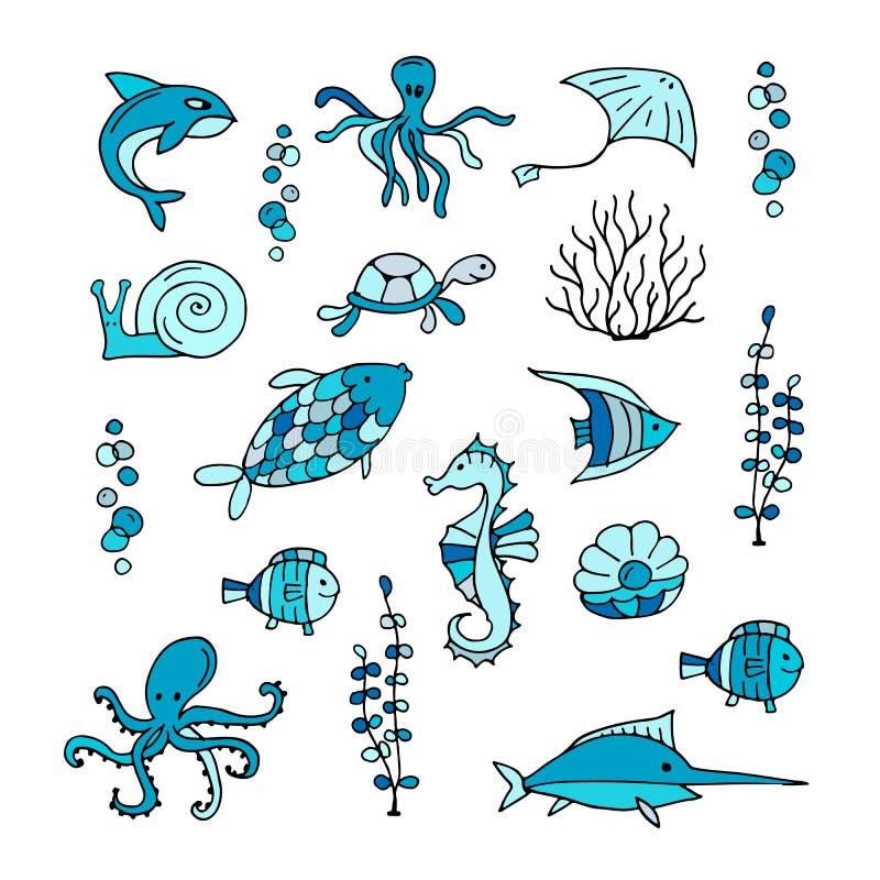 Meeresflora und -fauna, Sammlung Skizzen für Ihr Design lizenzfreie abbildung