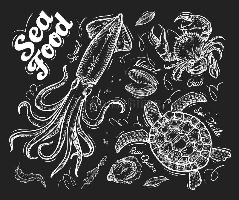 Meeresfrüchte Übergeben Sie gezogene Vektorskizze einer Schildkröte, Krabbe, Miesmuschel, Auster, Kalmar stock abbildung