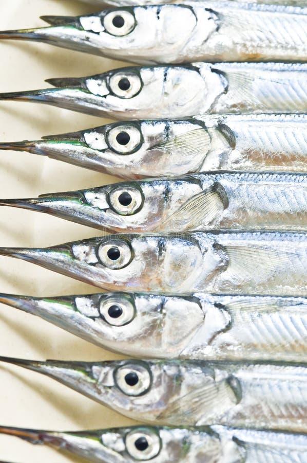 Meeresfrüchte von Japan lizenzfreie stockfotos