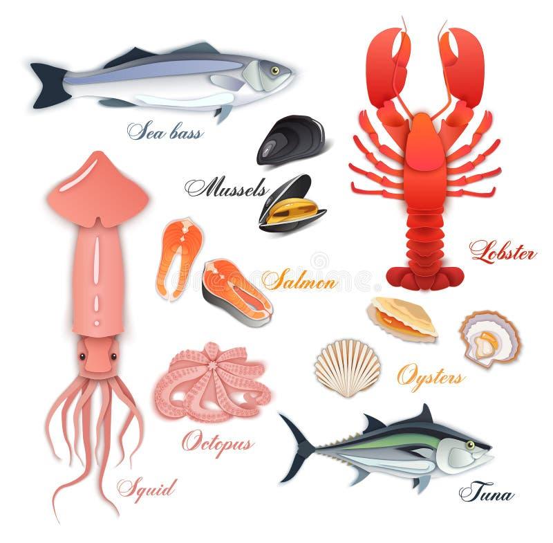 Meeresfrüchteseitenentwurf mit Miesmuschel, Fisch Lachs, Garnele Hummer, Kalmar, Krake, Kammmuschel, Hummer, Misten, Molluske ode vektor abbildung
