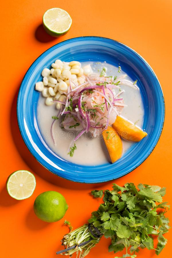 Meeresfr?chte ceviche, typischer Teller von Peru Ansicht von oben lizenzfreies stockfoto