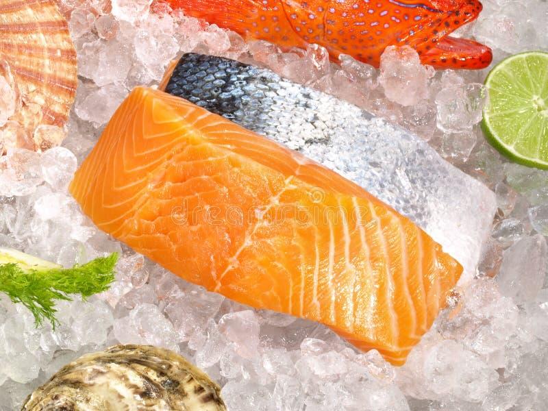 Meeresfr?chte und Fische auf Eis lizenzfreie stockfotos
