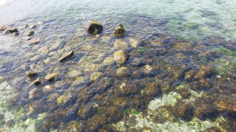 Meeresgrund lizenzfreie stockfotografie