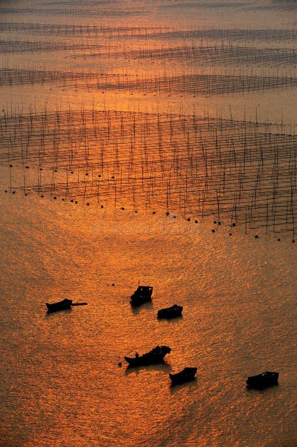 Meerespflanzebauernhof und -boote stockbild