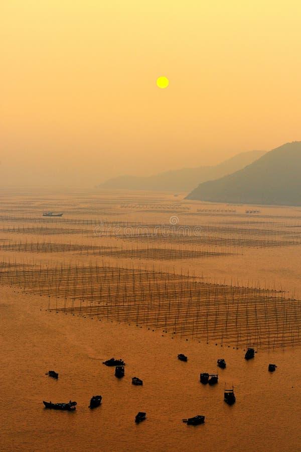 Meerespflanzebauernhof und -boote lizenzfreie stockfotografie