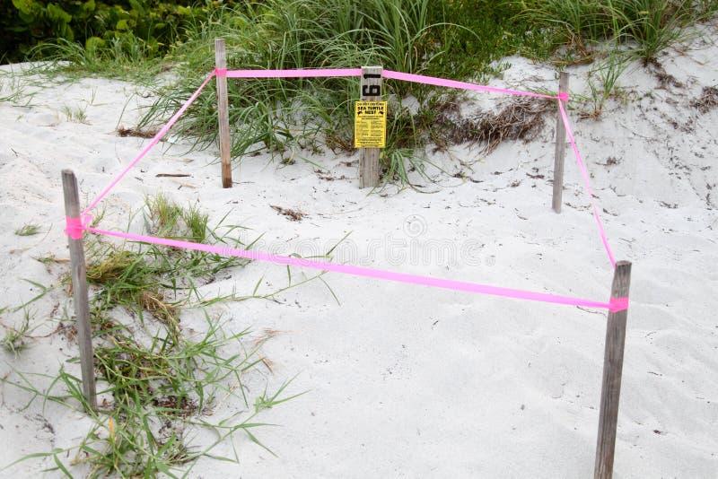 Meeresschildkröte-Nest-Schutz, Key Biscayne Florida, USA stockbilder