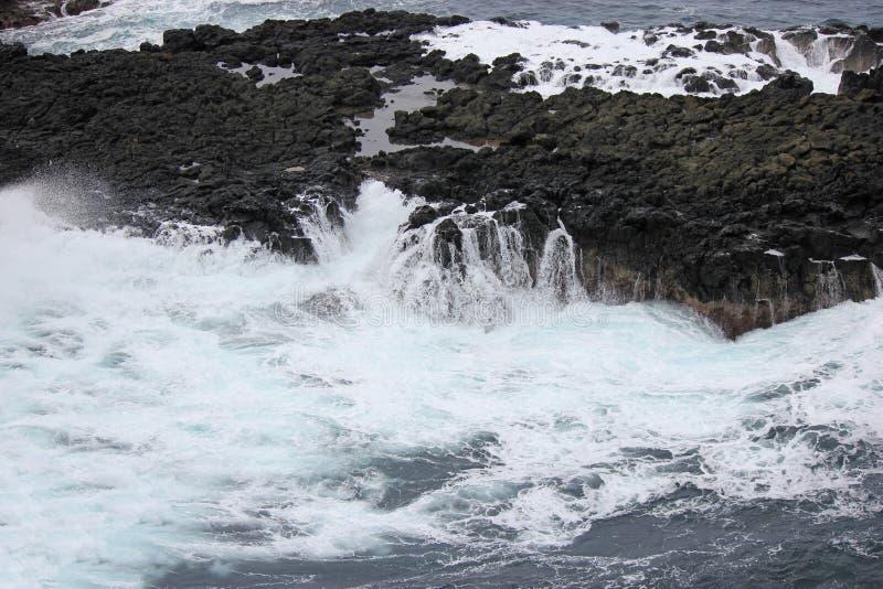 Meereswogen, die gegen Felsen, Meerblick, das Nobbies Victoria zusammenstoßen stockfoto