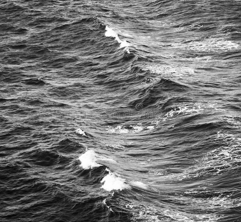 Meereswogen Schwarzweiss stockfotografie