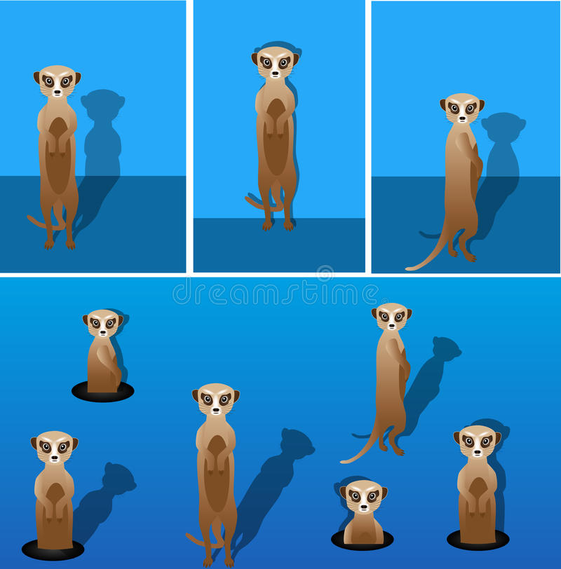 Meerkat vektor abbildung