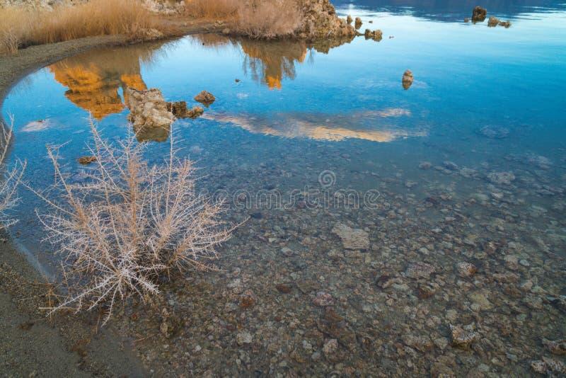 Meeronkruid en vegetatie bij Monomeer Californië Tufa vormingen in water, bij zonsopgang stock afbeelding