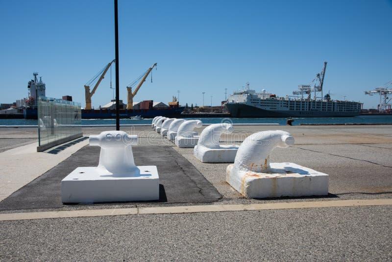 Meertrossen in Victoria Quay stock fotografie