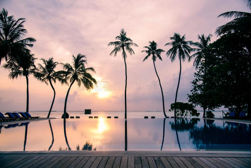 Meeru Island Maldives April 2019. - The beach at sunsrise on tropical island with palm trees. royalty free stock image