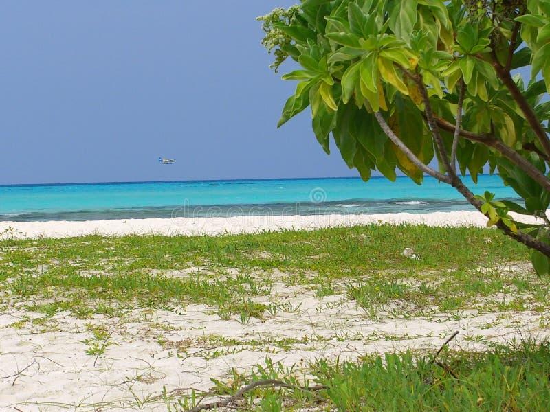 Meeru Maldiverna - ankomst royaltyfri bild