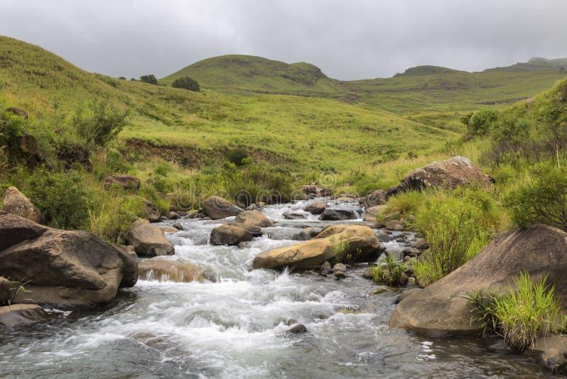 Meeslepend water in bergstroom royalty-vrije stock fotografie