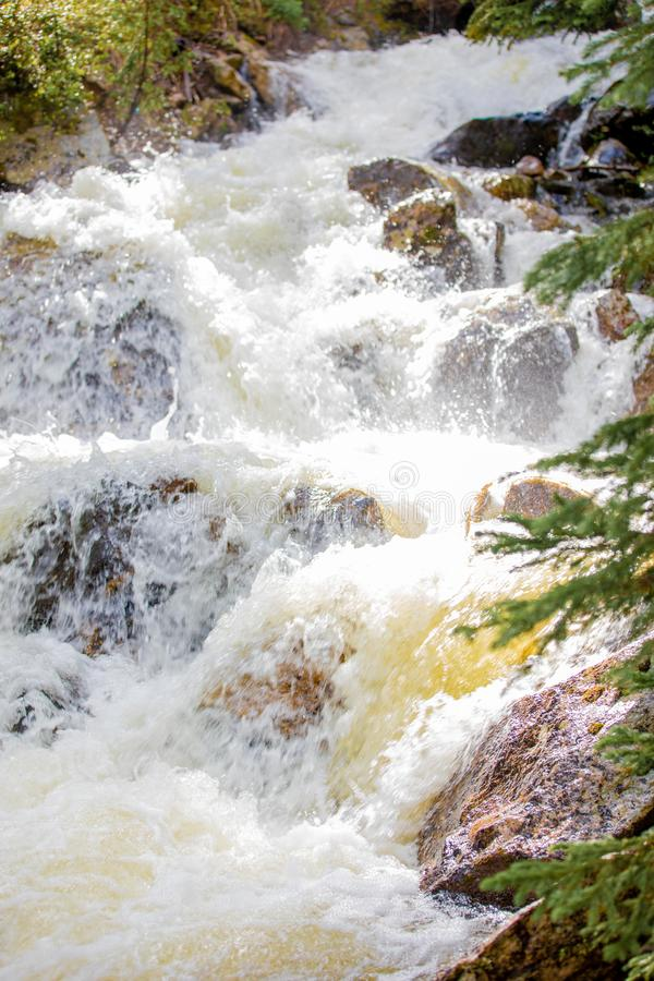 Meeslepende Waterval met Weelderig Gras in Rocky Mountain National Park stock foto