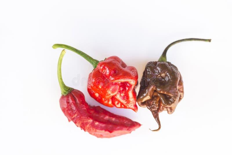 Meest hotest Spaanse peper drie ter wereld, royalty-vrije stock fotografie