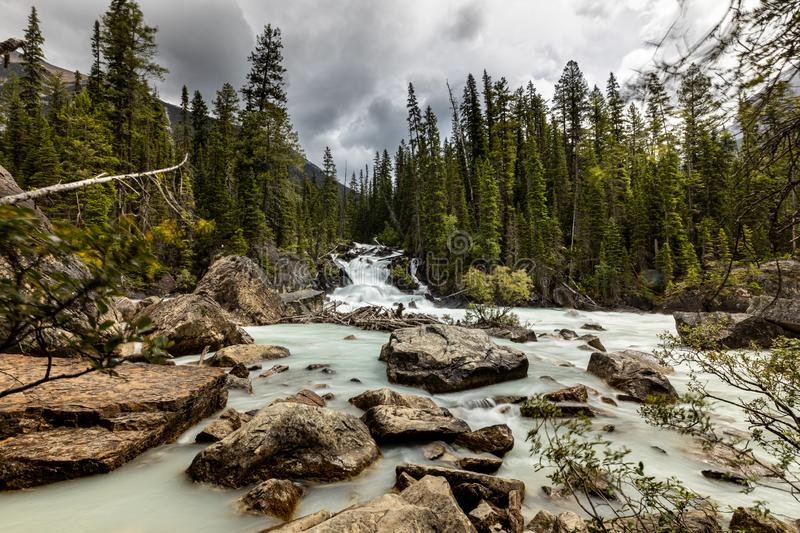 Meeting Point of Yoho River and Kicking Horse River royalty-vrije stock foto's