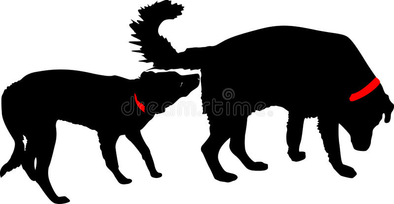 Download Meeting of two dogs stock vector. Illustration of good - 10178217