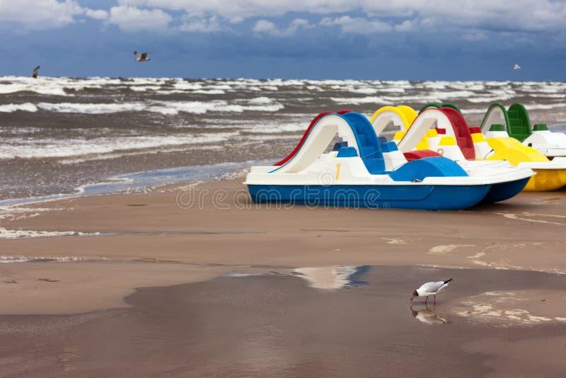 Meeuwen en pedaalboten in een onweer op de Oostzee stock foto
