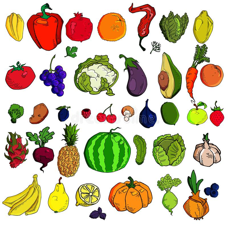 Mega collection of premium quality vector illustrations of fruits and vegetables. Doodle hand-drawn icons of fruits and vegetables stock illustration