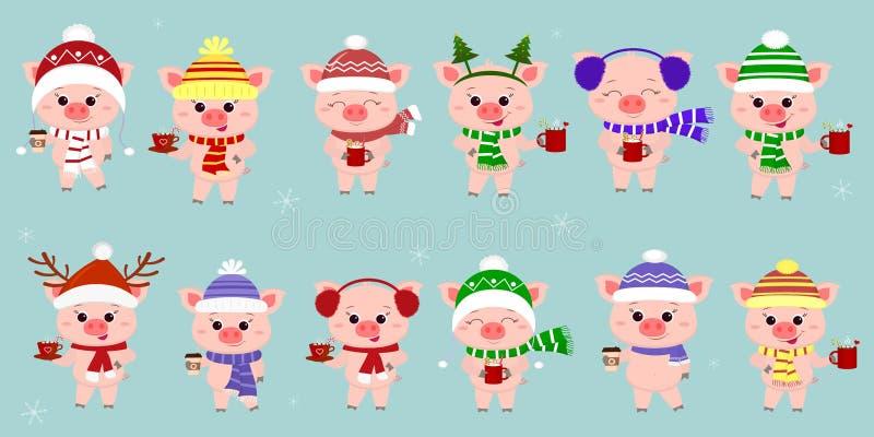 Mega set dwanaście świni w różnych kapeluszach i szaliku z filiżankami różni gorący napoje na tle płatek śniegu Szczęśliwy nowy…  ilustracji