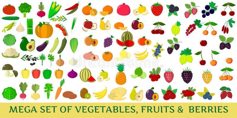 Mega set of fresh vegetables, fruits and berries illustrations on a white background. stock illustration