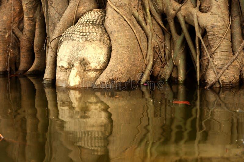 Mega vloed bij hoofd van zandsteen Boedha in Thailand stock fotografie