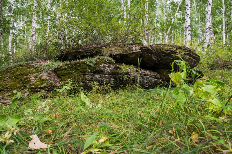 Surviving megalith remains. Megalith in the forest, preserved to this day royalty free stock photography