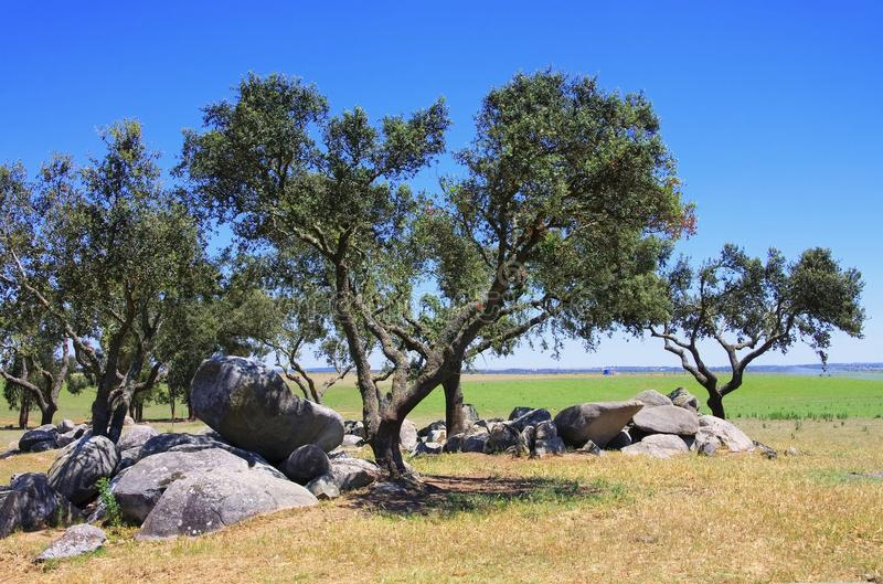 Megalith and Holly Oak. S in Portugal royalty free stock image