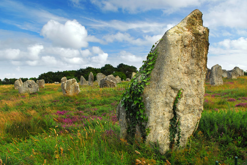Megalithic monuments in Brittany. Green vines on prehistoric megalithic monuments menhirs in Carnac area in Brittany, France stock photos