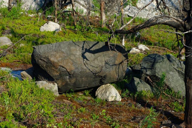 Megalithic stone -seid,  on mountain Vottovaara, Karelia, Russia. Megalithic stone -`seid`, on mountain Vottovaara, Karelia, Russia stock images
